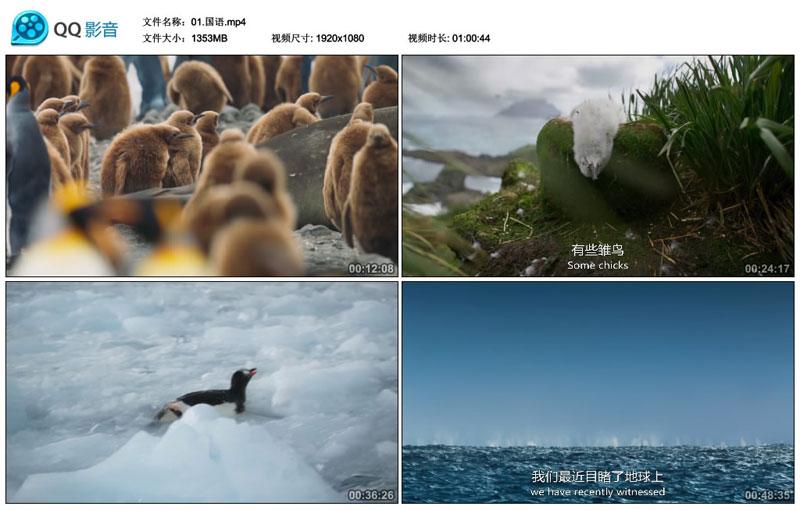 BBC出品2019年经典之作《七个世界 一个星球》高清1080P,英语,中英字幕版本+国语版本