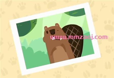 儿童冒险益智动画片《奥托看动物 OTTO'S WALK》英文版全10集下载 mp4/720p 百度云网盘